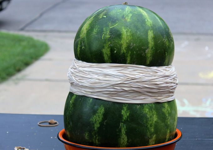 The Big Watermelon Experiment: Physics, forces and flying fruit