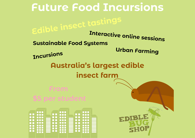 Edible Insects: Future food incursions