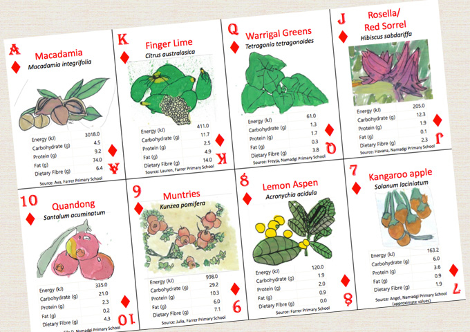 Nutritional Information Playing Cards